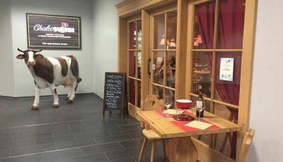 chalet suisse mendrisio ingresso
